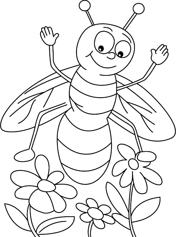 honey bee bee coloring pages honey bee coloring pages surfnetkids honey coloring bee bee pages