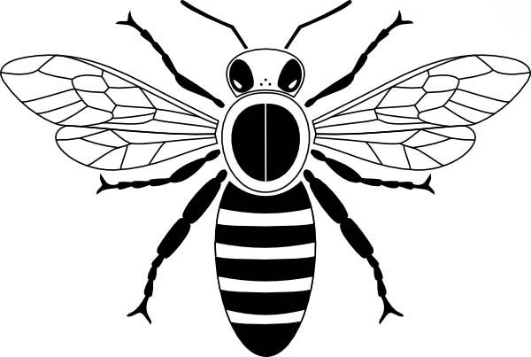 honey bee bee coloring pages mature honey bee coloring pages coloring sky pages bee honey bee coloring