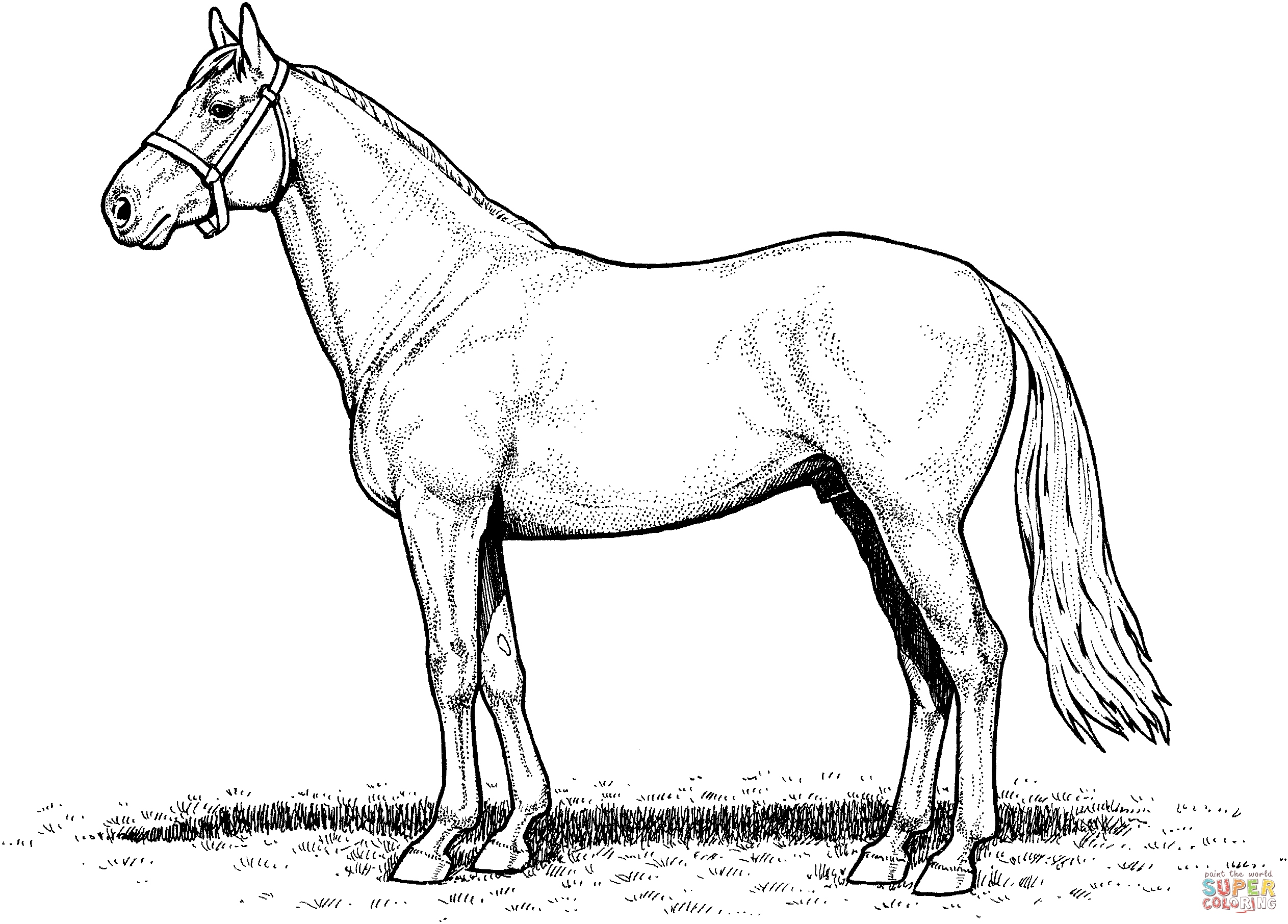 horse coloring image fun horse coloring pages for your kids printable horse image coloring