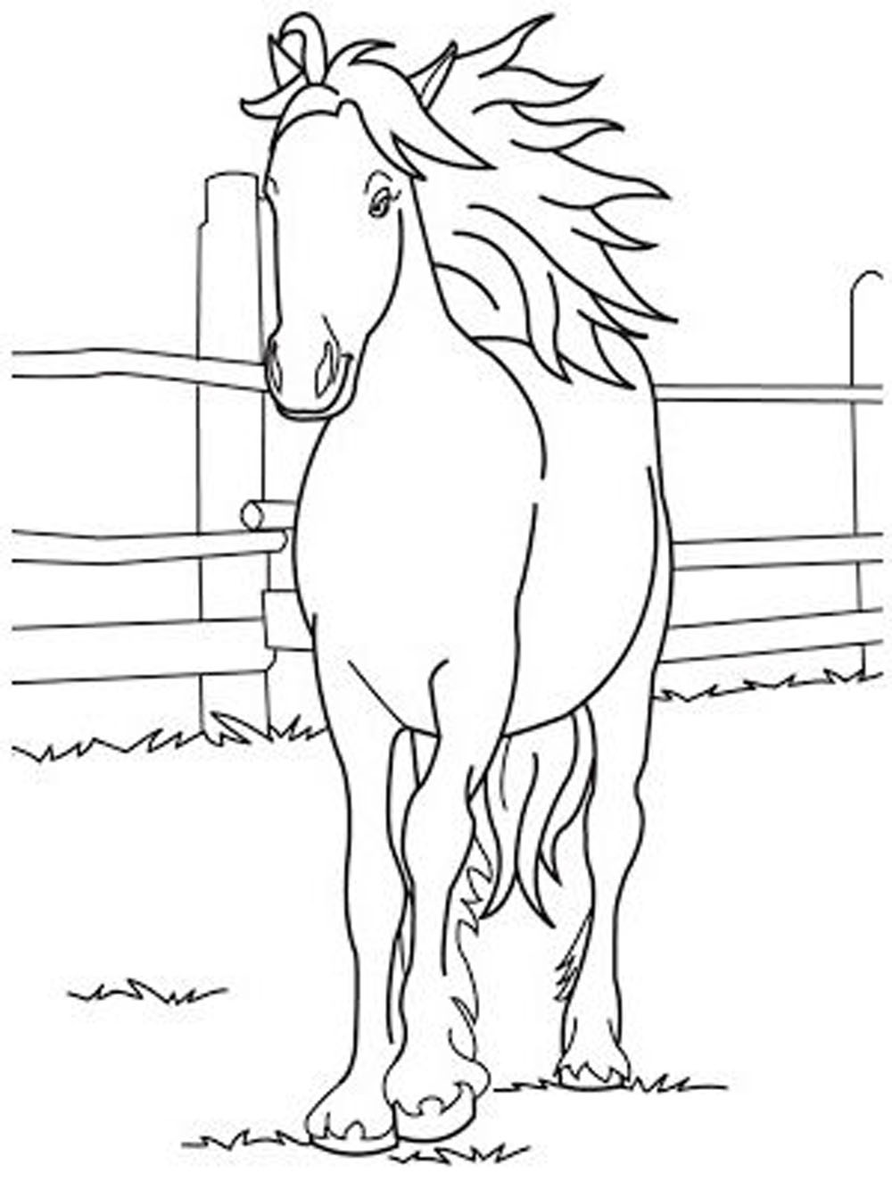 horse coloring image fun horse coloring pages for your kids printable image horse coloring