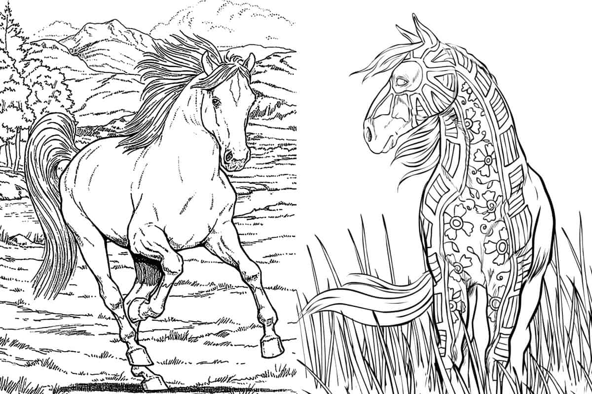 horse coloring image hand drawn horse for adult coloring page art therapy stock horse image coloring