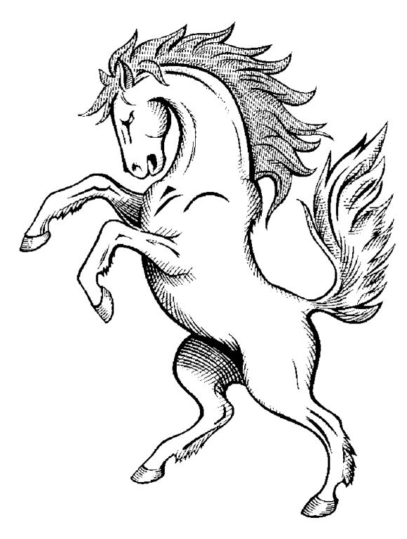 horse drawing coloring pages horse coloring pages spirit 580x767png 580767 horse coloring drawing horse pages