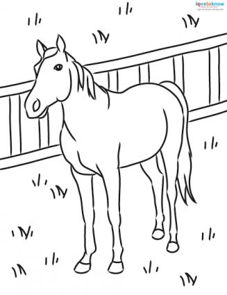 horse pictures to print out coloring page horse in motion horse out pictures to print
