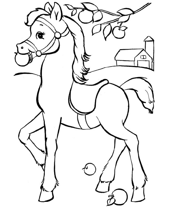 horse pictures to print out horse color sheet to print out omaľovánky kone zvieratá pictures horse to out print