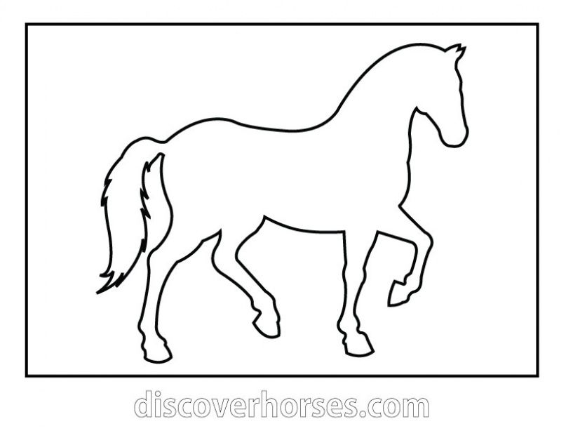 horse pictures to print out horse coloring pages 2019 best cool funny print horse to out pictures