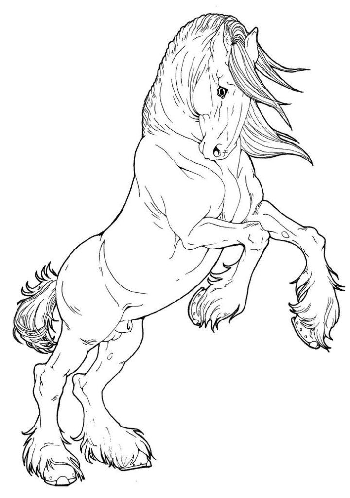 horse pictures to print out horse coloring pages free download on clipartmag pictures horse to out print
