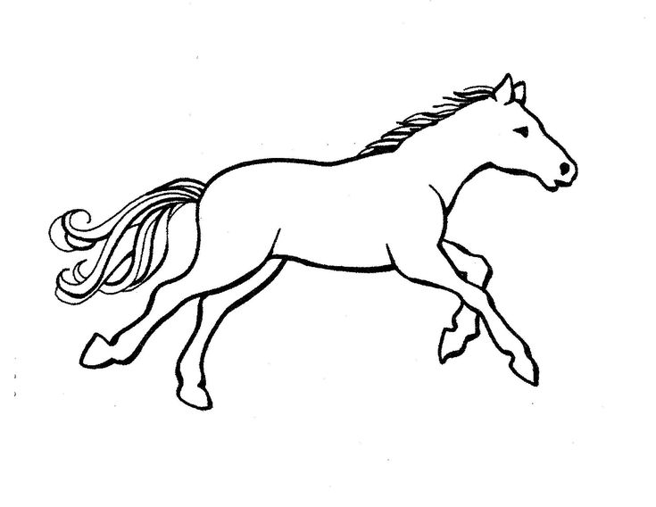 horse pictures to print out horse coloring pages pdf gtm ccamish zwierzęta out horse print to pictures