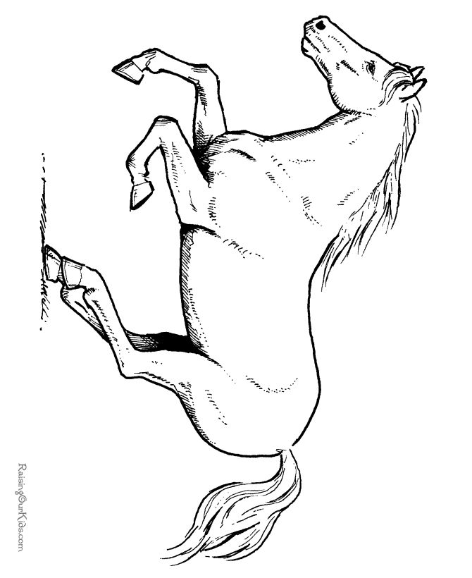 horse pictures to print out horse coloring pages to print lovetoknow to pictures print out horse