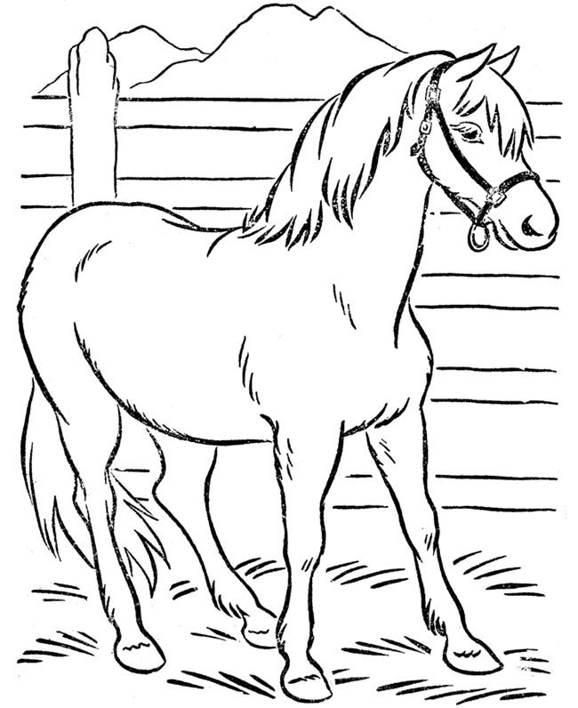 horse pictures to print out horse template animal templates free premium templates horse to out print pictures