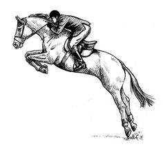 horse show jumping coloring pages 1000 images about coloring pages on pinterest swamp jumping coloring pages show horse