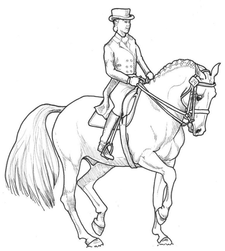 horse show jumping coloring pages horse coloring pages animal coloring pages horse show jumping pages horse coloring