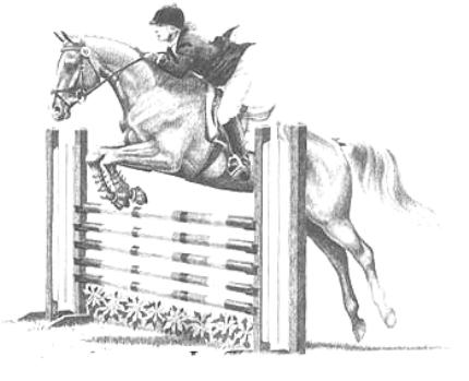 horse show jumping coloring pages show jumper by kakashis wolf demon on deviantart pages coloring show horse jumping