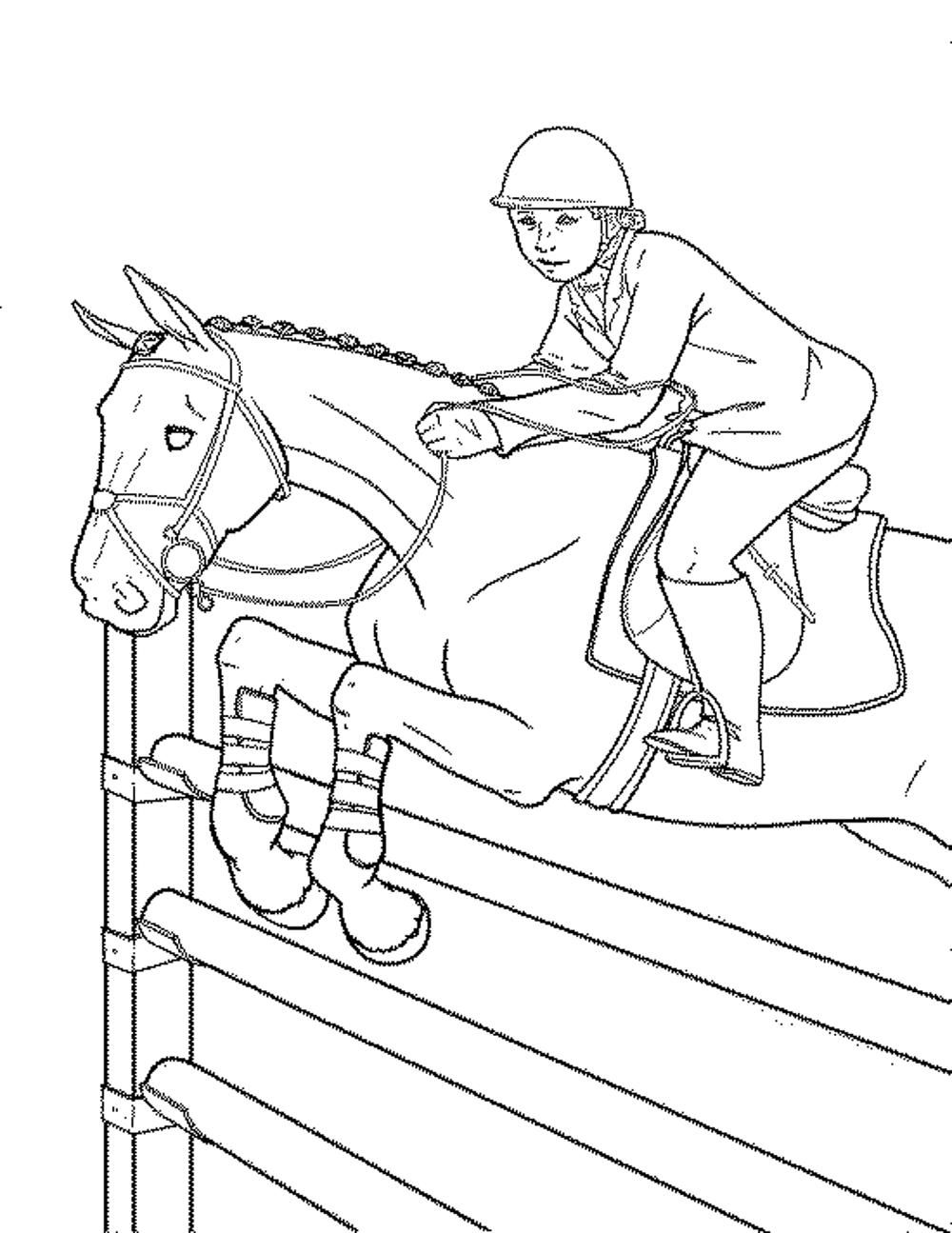 horse show jumping coloring pages show jumping coloring pages at getcoloringscom free pages show coloring jumping horse