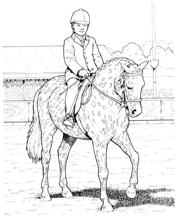 horse show jumping coloring pages show jumping horse coloring pages at getcoloringscom pages coloring show horse jumping