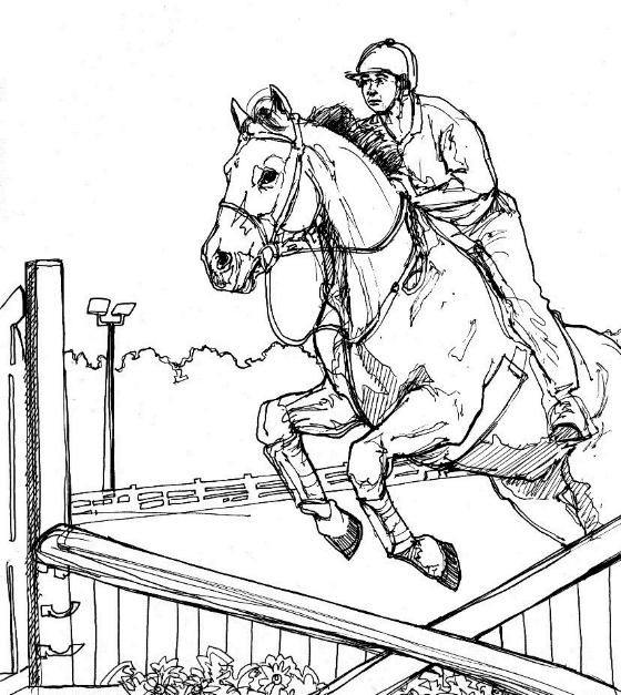 horse show jumping coloring pages show jumping horse coloring pages at getcoloringscom show jumping coloring horse pages