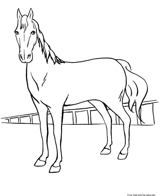 horses for free 9 horse coloring pages free pdf document download horses for free