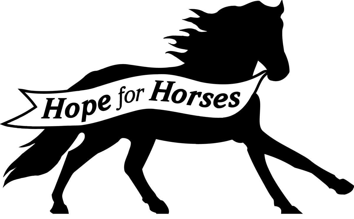 horses for free cartoon horse coloring pages free printable cartoon horse horses free for