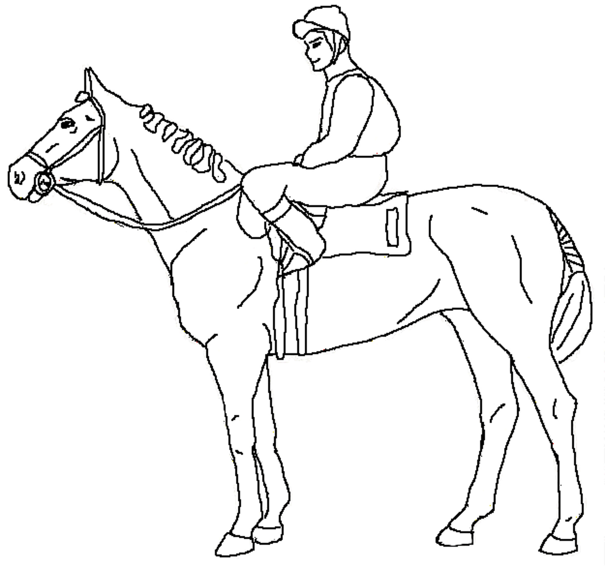 horses for free free printable horse coloring pages for adults coloring home for horses free