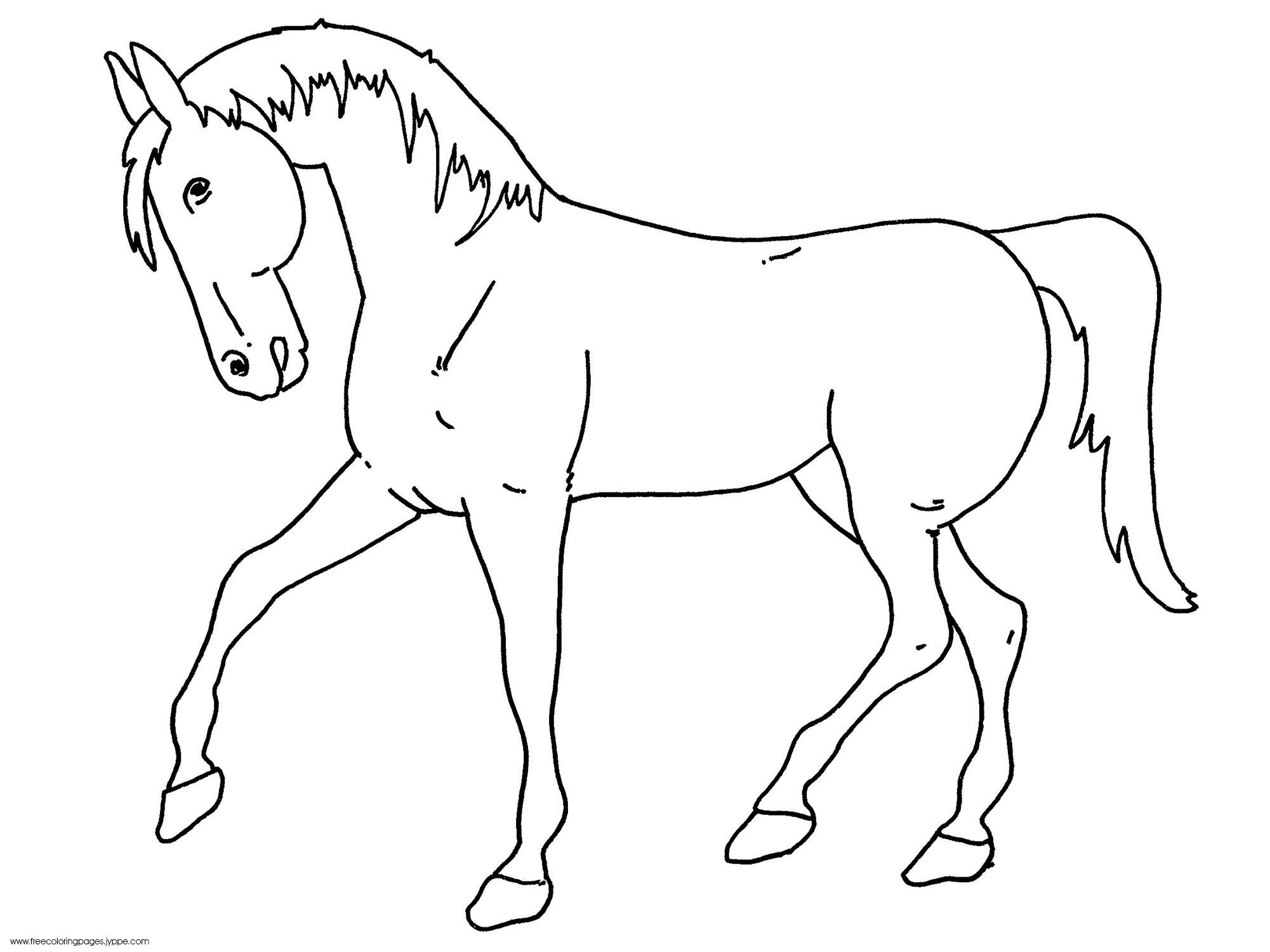 horses pictures to print fun horse coloring pages for your kids printable print horses pictures to 1 1