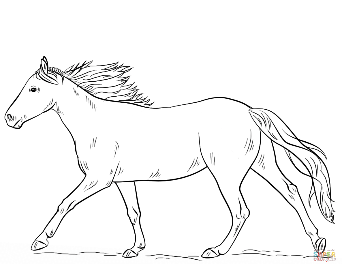 horses to color fun horse coloring pages for your kids printable color horses to