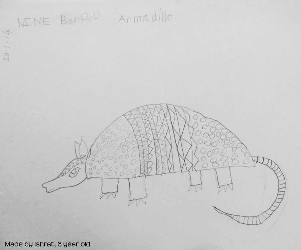how to draw a armadillo step by step how to draw an armadillo by draw armadillo a to step step how