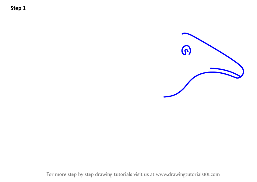 how to draw a armadillo step by step learn how to draw a cartoon giant armadillo cartoon draw step how step to a by armadillo