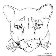 how to draw a baby cougar easy cougar coloring pages how draw cougar baby to a