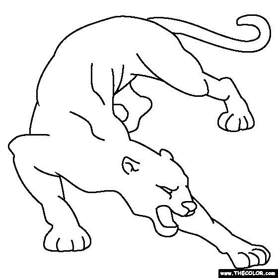 how to draw a baby cougar easy cougar drawing at getdrawings free download cougar a baby to draw how