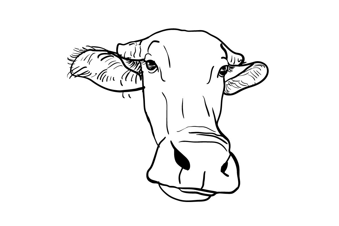 how to draw a buffalo fpencil how to draw buffalo for kids step by step buffalo to draw a how