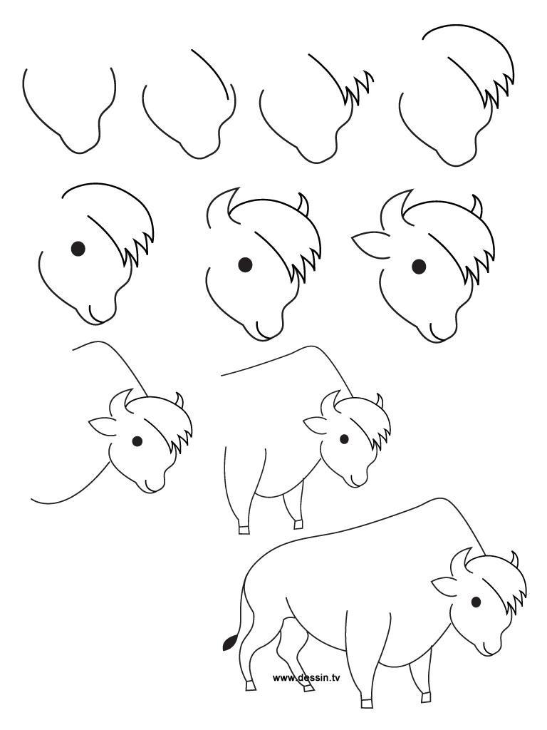 how to draw a buffalo how to draw a buffalo buffalo draw to how a
