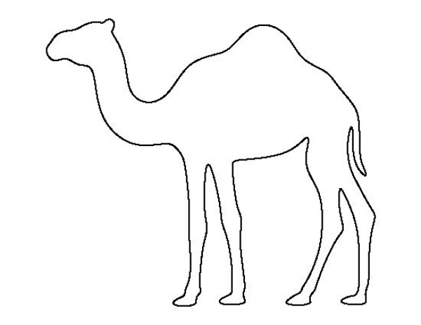 how to draw a camel drawing a cartoon camel how a draw to camel