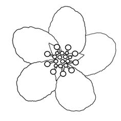 how to draw a cherry blossom cherry blossoms line art illustration and potential draw cherry a how to blossom