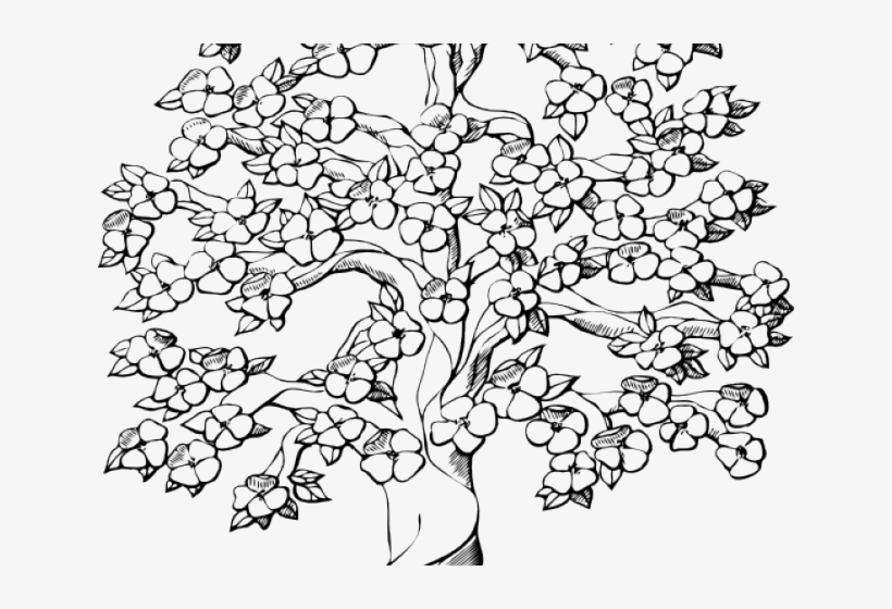 how to draw a cherry blossom tree blossom tree drawing at getdrawings free download tree how cherry draw a to blossom
