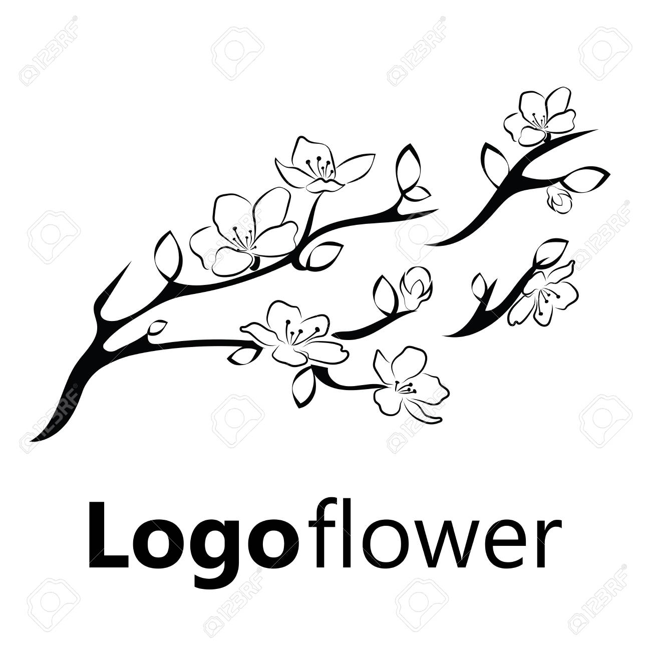 how to draw a cherry blossom tree cherry blossom drawing outline at getdrawings free download draw blossom tree how a cherry to