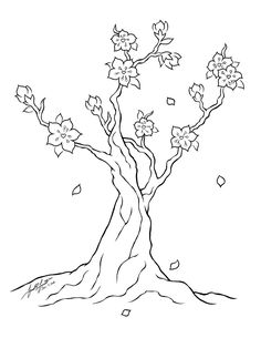 how to draw a cherry blossom tree how to draw cherry blossoms cherry blossom drawing easy cherry a how blossom tree to draw