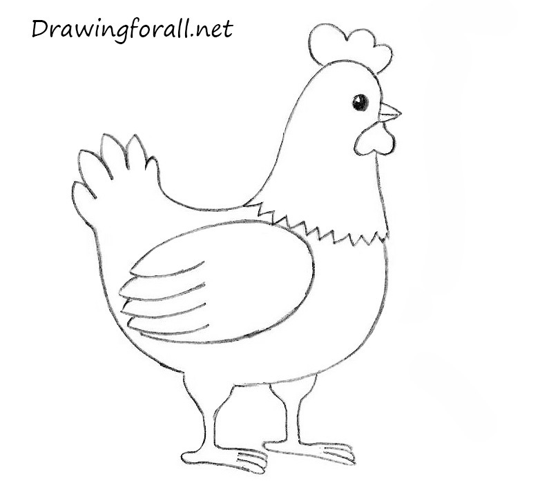 how to draw a chick how to draw a chicken for kids drawingforallnet how to a chick draw