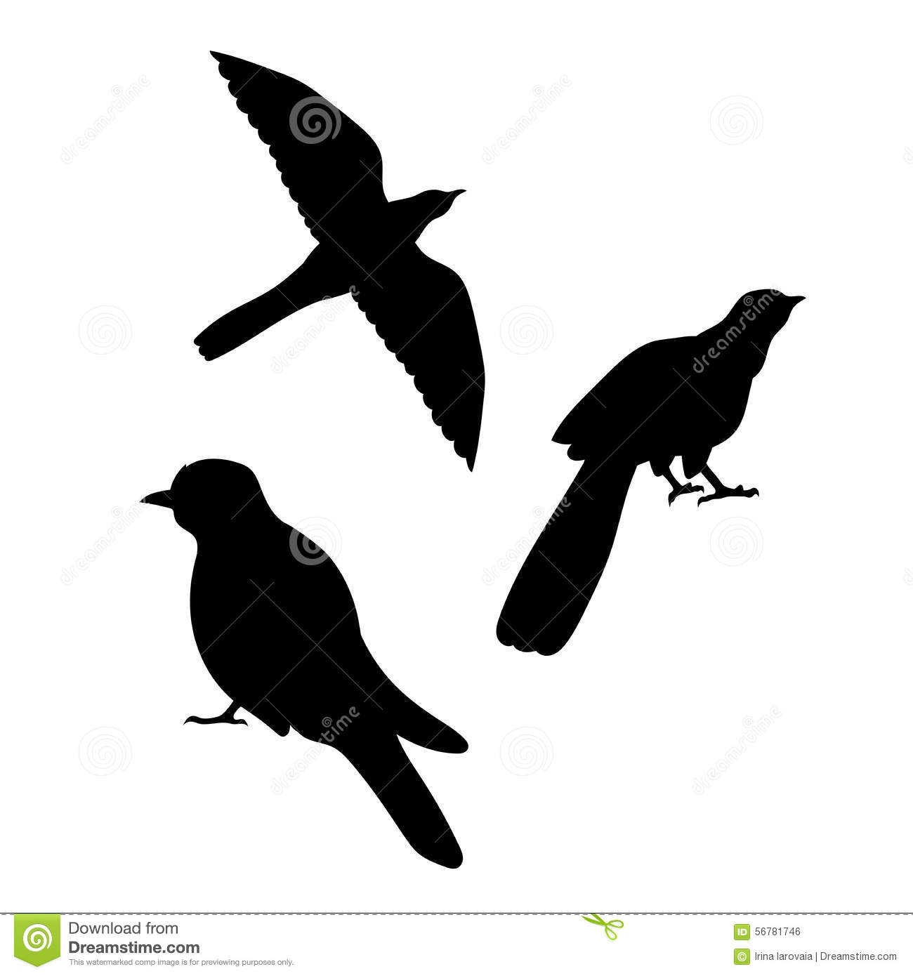 how to draw a cuckoo bird art gallery a to how bird cuckoo draw