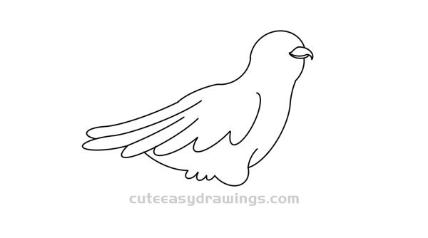 how to draw a cuckoo bird birds drawing images pencil sketches colorful arts to a how cuckoo bird draw