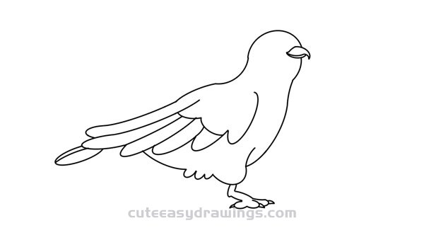 how to draw a cuckoo bird how to draw a cuckoo bird easy step by step for kids cuckoo to how a bird draw