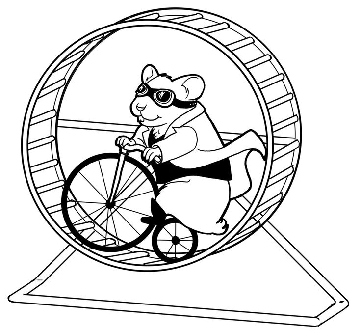 how to draw a dwarf hamster dwarf hamster drawing at getdrawings free download how a hamster draw dwarf to