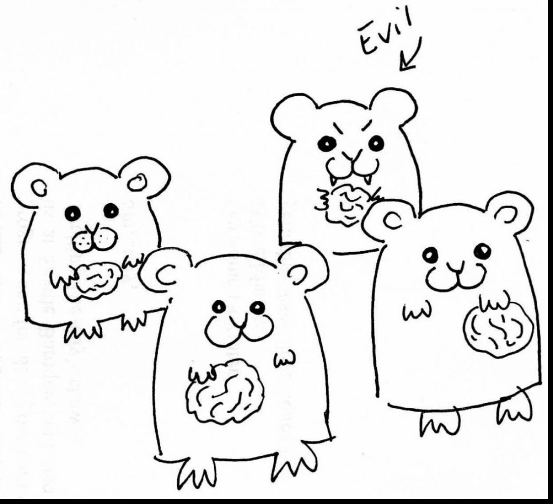 how to draw a dwarf hamster dwarf hamster drawing at getdrawings free download how hamster to a dwarf draw
