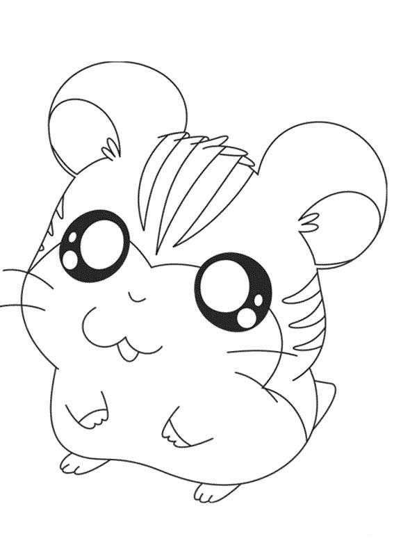 how to draw a dwarf hamster hamster cartoon drawing at getdrawings free download a draw to how dwarf hamster