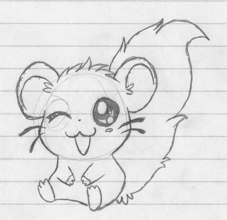 how to draw a dwarf hamster hamster drawing google search drawings pinterest dwarf a to hamster draw how