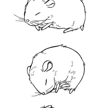 how to draw a dwarf hamster how to draw a hamster youtube draw dwarf to hamster a how