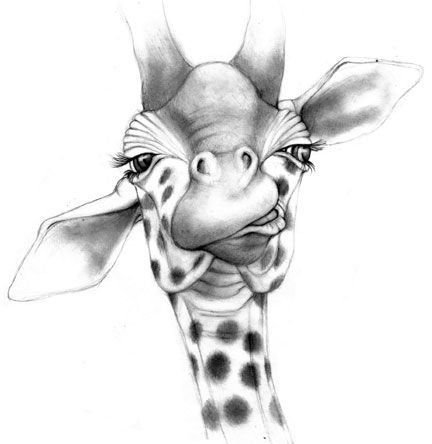 how to draw a giraffe face animal by missjema on deviantart in 2020 giraffe art to how a face giraffe draw