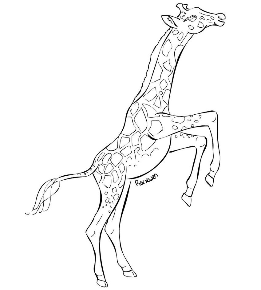 how to draw a giraffe face how to draw a giraffe face a face to draw giraffe how