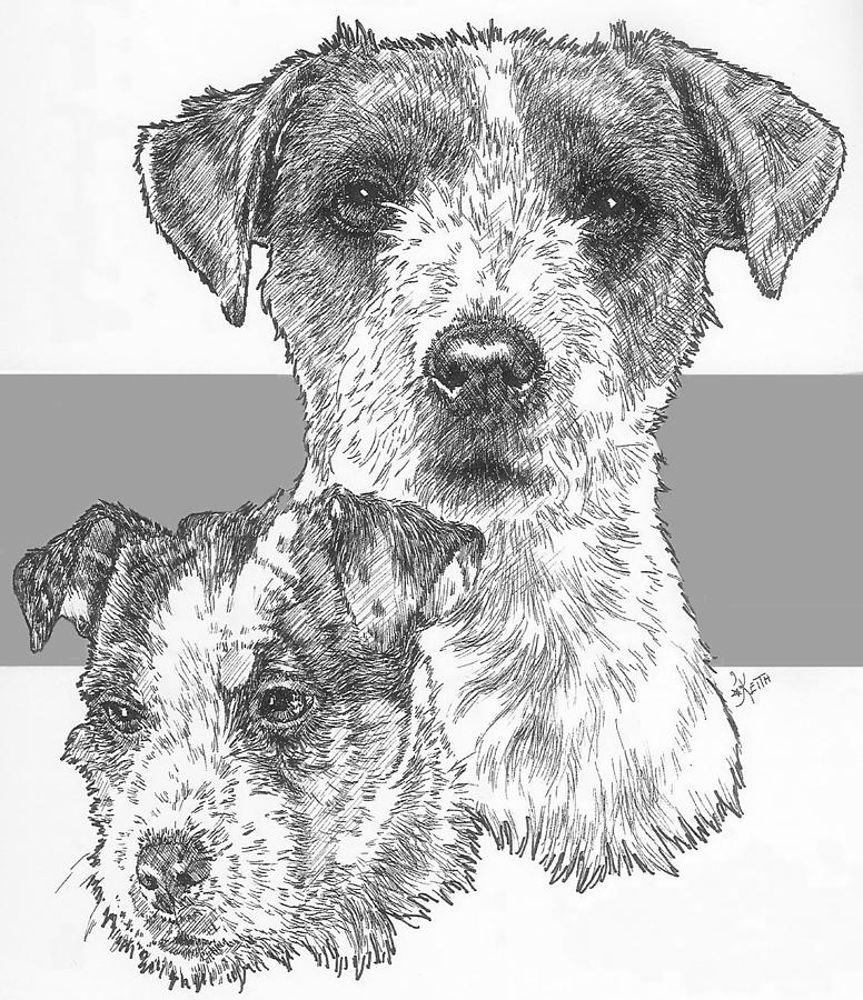 how to draw a jack russell terrier how to draw a jack russell step by step easy animals 2 draw a russell draw jack how terrier to