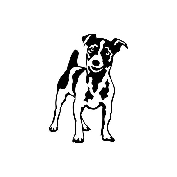 how to draw a jack russell terrier jack russell terrier pencil drawing art print a4 only jack draw a terrier russell how to