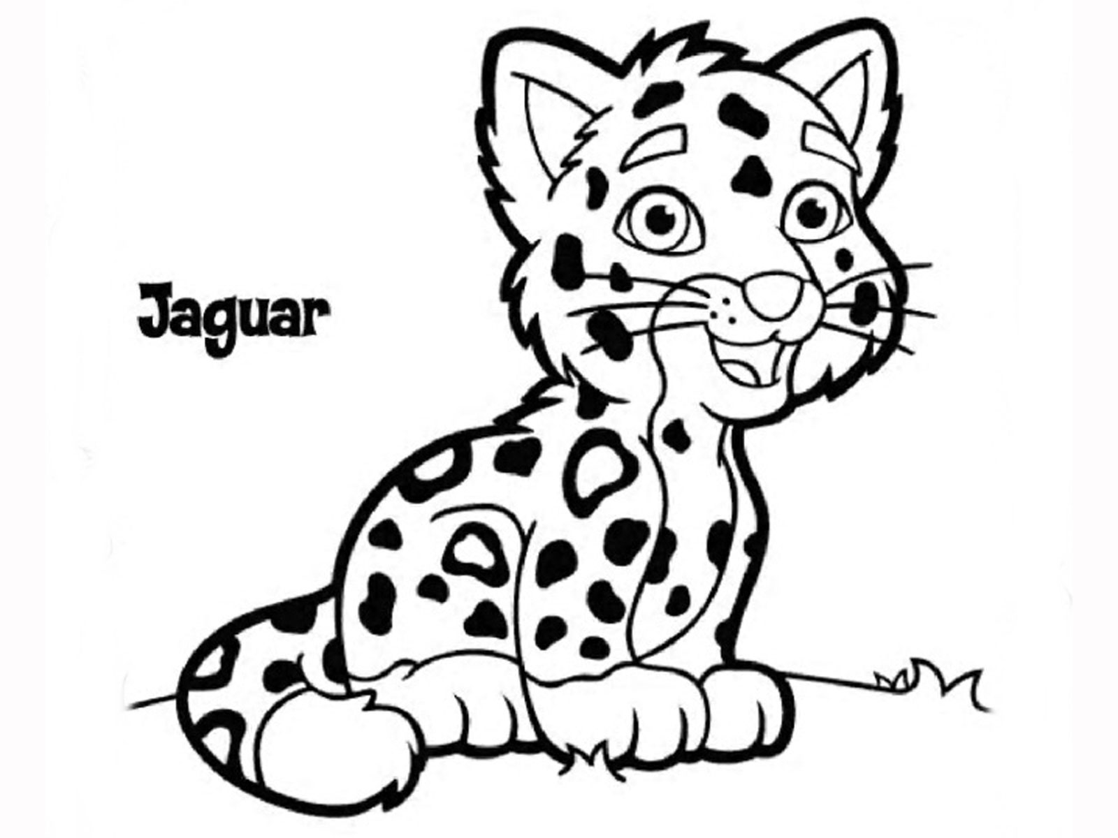 how to draw a jaguar easy jaguar drawing at getdrawings free download draw how to a jaguar