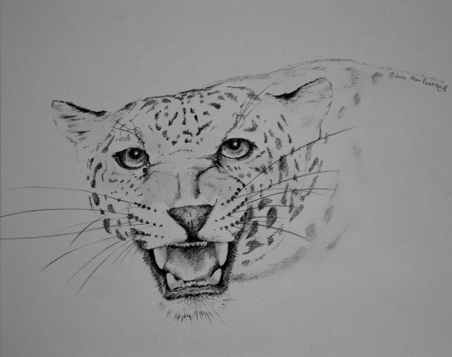 how to draw a jaguar easy jaguar drawing at paintingvalleycom explore how to draw jaguar a